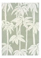 FB-Japanese-Bamboo-Jade-039507